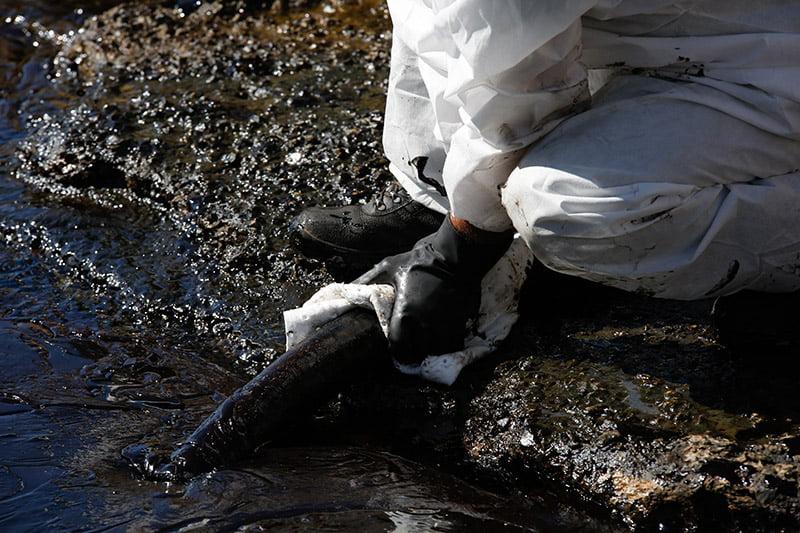Photo of Τεράστια η οικολογική καταστροφή στο Σαρωνικό….