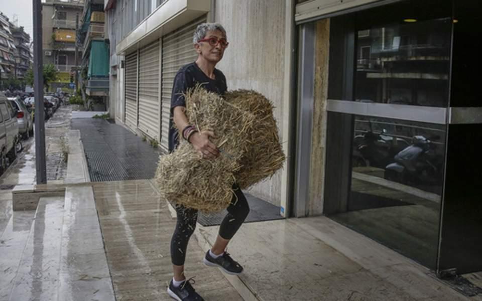 Photo of Πεταξαν σανό στα γραφεία ΑΝΕΛ για τη κωλοτουμπες Καμμένου