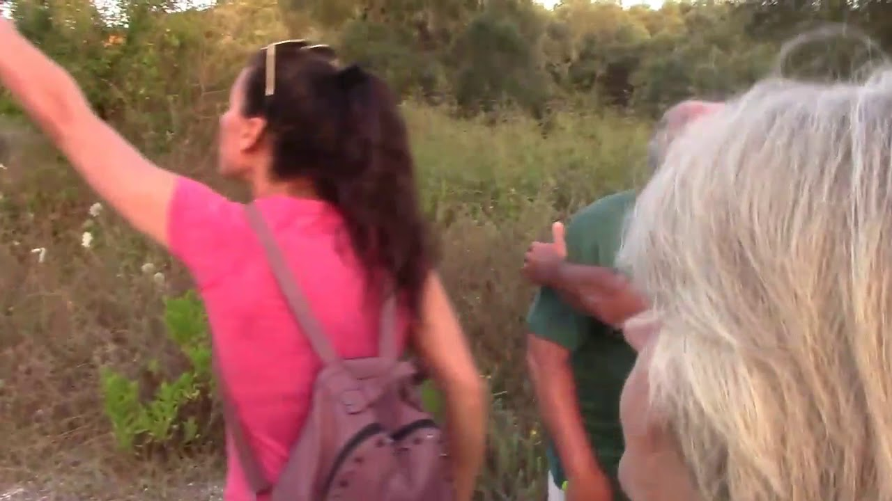 Photo of Η Χουντα του ΣΥΡΙΖΑ με τα ΜΑΤ απαγορεύουν την πρόσβαση στα Χωράφια τους…VIDEO