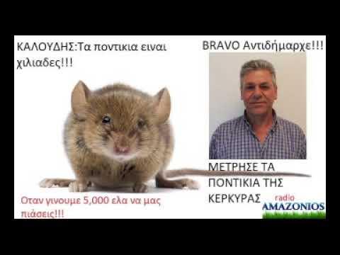 Photo of Ο Αντιδήμαρχος μέτρησε τα ποντίκια…..Ειναι χιλιάδες και δεν μπορούμε να κάνουμε τίποτα!!!! (video)