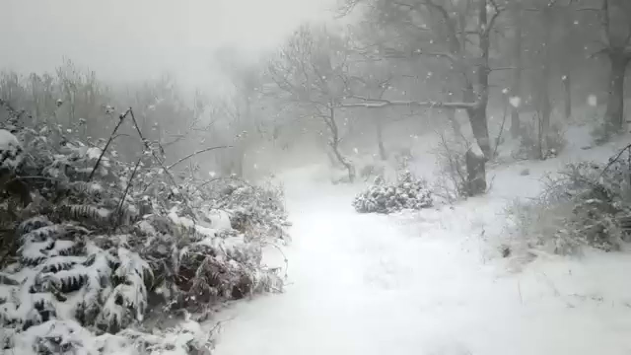 Photo of Ερχεται «πολικό εξπρές» και χιονιάς «μακράς διαρκείας» από την Πέμπτη
