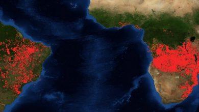 Photo of Καίνε τον Αμαζόνιο και κάθε πνεύμονα…SOS και στην Αφρική!!!