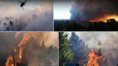 Photo of Εύβοια, Βοιωτία, Θάσος, Ιωάννινα και Άρτα καίγονται…Φωτιές σε όλη τη Χώρα