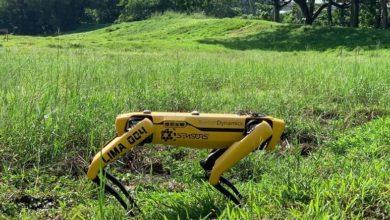 Photo of Οι εφιάλτες της Νέας Τάξης έφτιαξαν ρομπότ σκύλους και ελέγχουν για τα μέτρα (video)