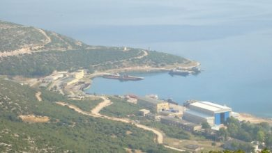 Photo of Περικύκλωσε η Τουρκία την Χώρα μας.Η Αλβανία συνδράμει την Τουρκία εις βάρος της Ελλάδας.