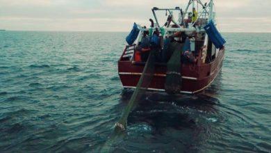 Photo of Στην Ιταλία τα αλιευτικά αποθέματα του Ιονίου για να ασκήσουμε το νόμιμο δικαίωμα της ΑΟΖ