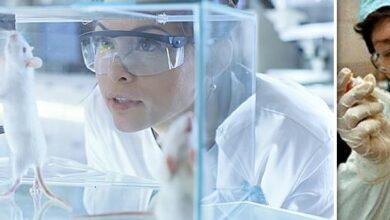 Photo of Το 2023 ολοκληρώνεται στους Πολίτες-Πειραματόζωα η πειραματική των εμβολίων.