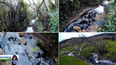 Photo of Τεμπλόνι:Τα απόβλητα και η ρύπανση συνεχίζεται και πέφτουν στην λίμνη και μετα τη λειτουργια του Βιολογικού (Video)