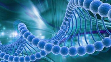Photo of Πώς Γίνεται Η Κατάχρηση Της Μεθόδου PCR Στον Εντοπισμό Των Υποθετικών «Κρουσμάτων» του Sars-Cov-2…